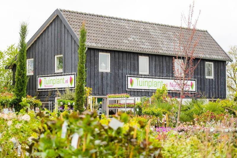 Tuinplant.nl BV
