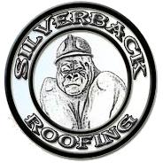 Silverback Roofing - Mesa, AZ - Roofing Contractors