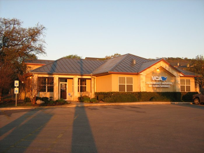 VCA Veterinary Hospital of Leon Springs Coupons near me in ...