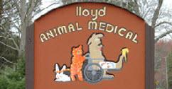 Lloyd Animal Medical Center - Arthur Mallock DVM