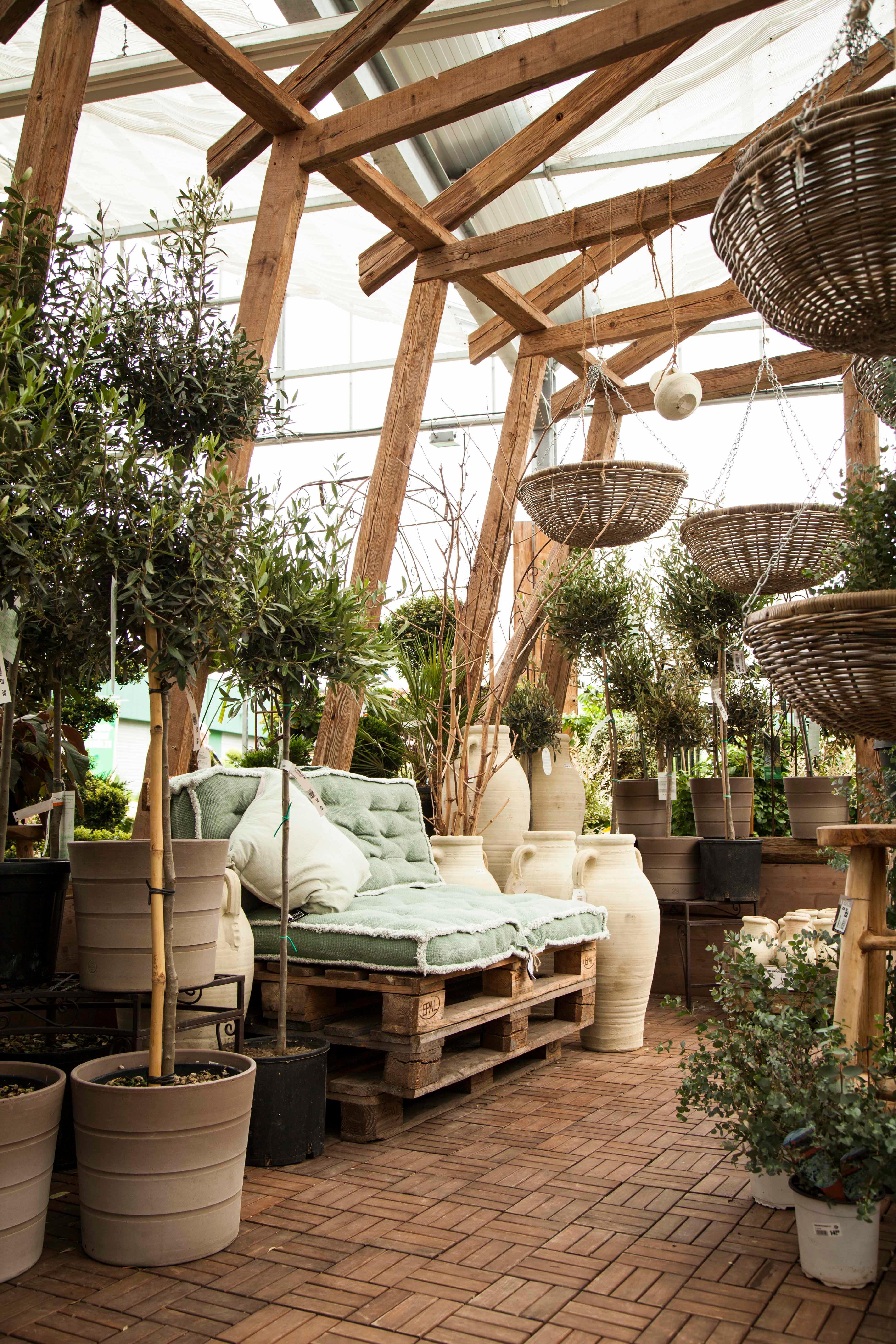 blumen und pflanzen in remscheid infobel deutschland. Black Bedroom Furniture Sets. Home Design Ideas