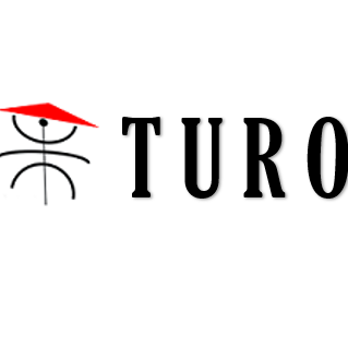 Turo Gutters