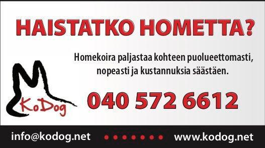 Kodog Ky Homekoirat
