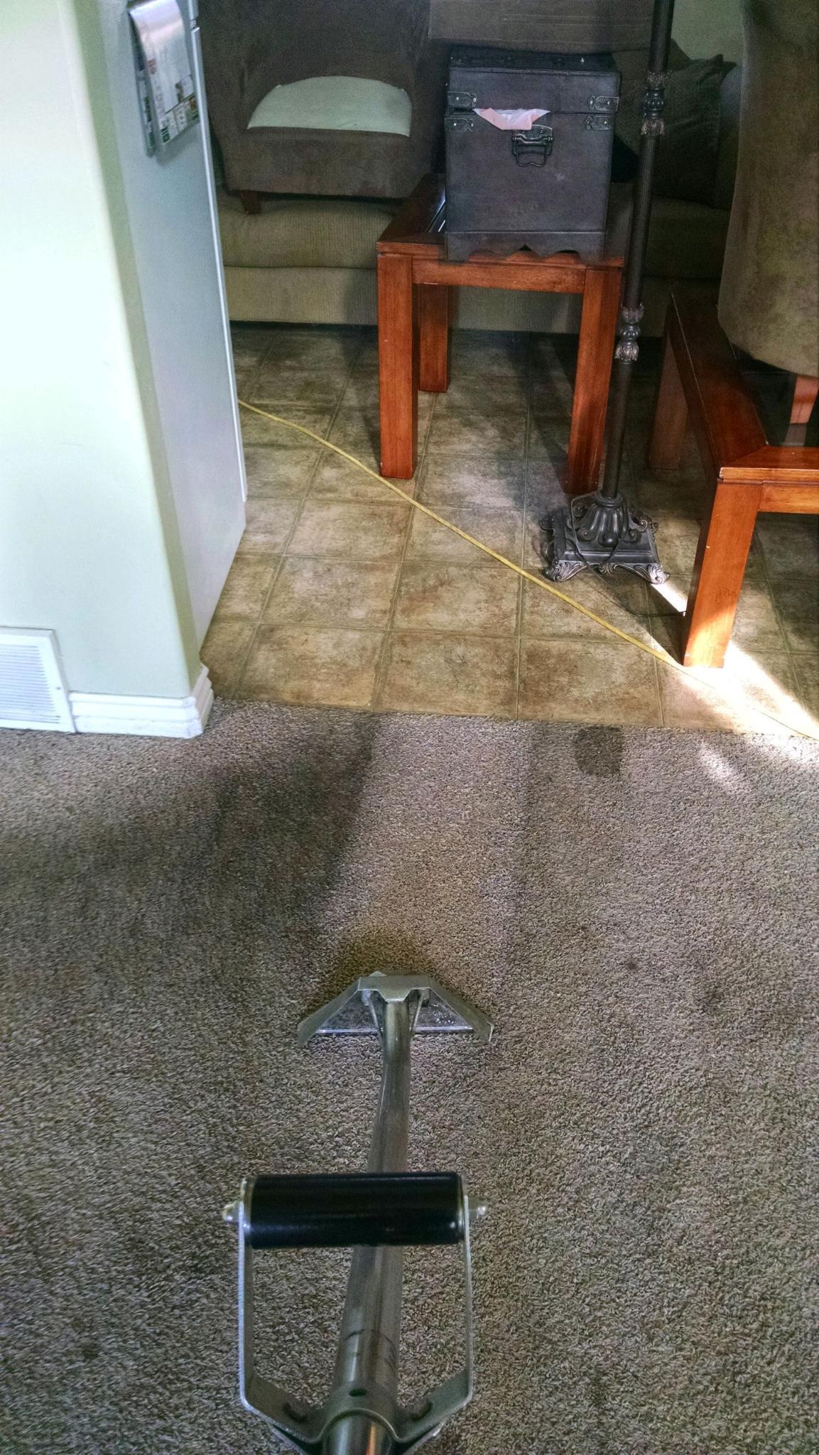 Kelly 39 S Deep Clean Carpet Upholstery Cleaning American Fork Utah Ut