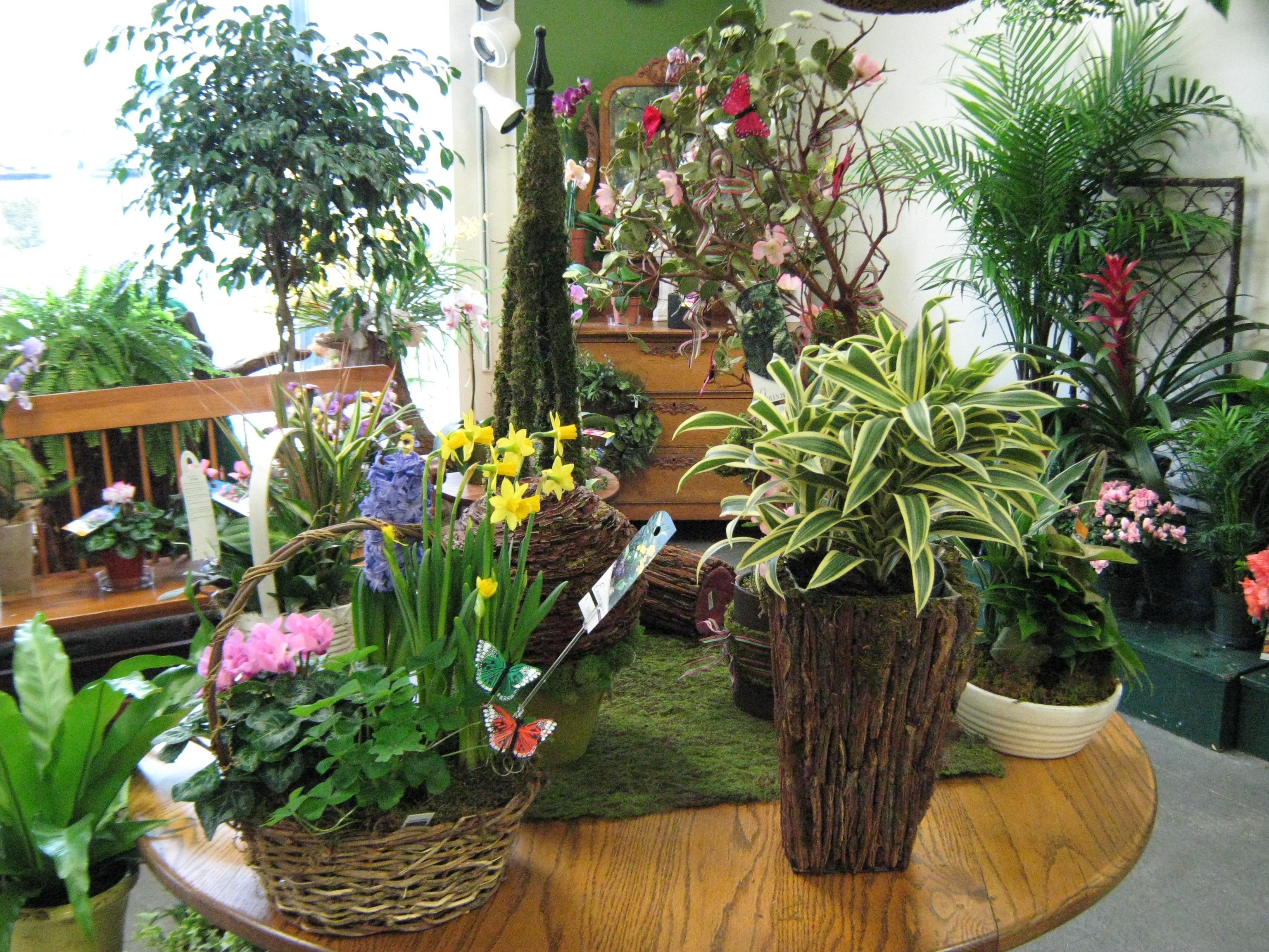 Concord Flower Shop image 6