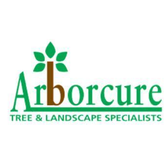 Arborcure - Plymouth, Devon PL3 6EQ - 01752 663895   ShowMeLocal.com
