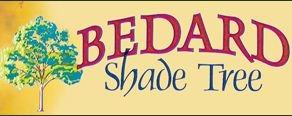 Bedard Shade Tree