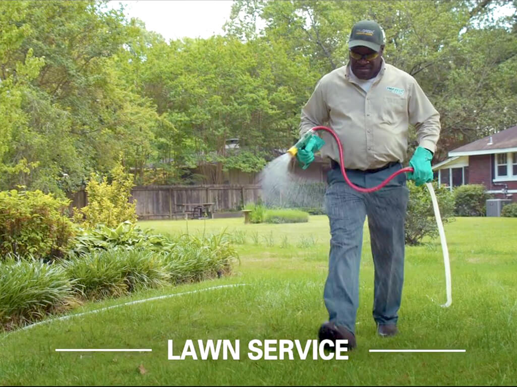 TruGreen Lawn Care Greenwood (317)889-2112
