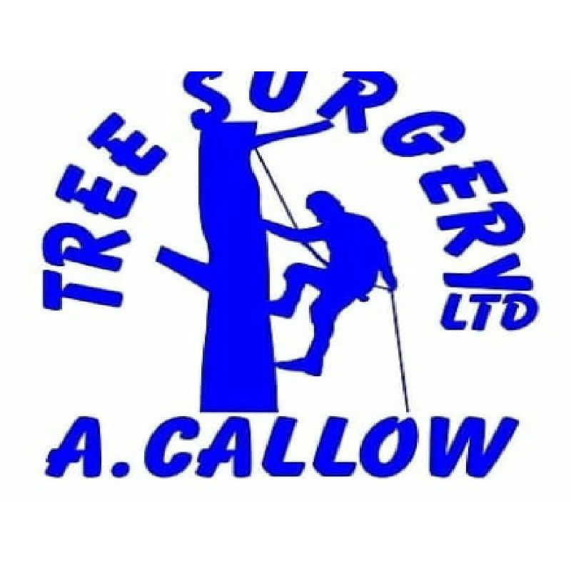 Adrian Callow Tree Surgery Ltd - Worcester, Worcestershire WR2 6QR - 01905 560501 | ShowMeLocal.com