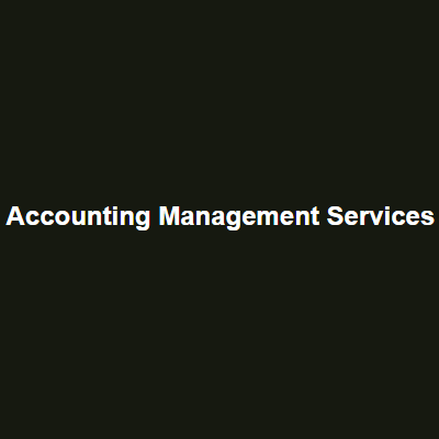 Accounting Management Services - Wesley Chapel, FL - Accounting