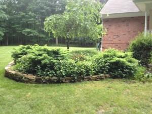 Image 7 | Green Zebra Landscaping
