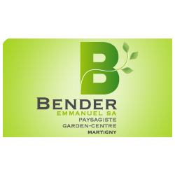 Bender Emmanuel SA