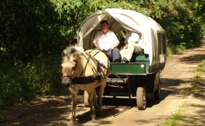 Lamoen Ponyrecreatie en Huifkarverhuur Het