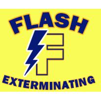 Flash Exterminating