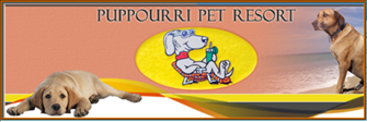 Puppourri Pet Resort - New Kensington, PA - Kennels & Pet Boarding