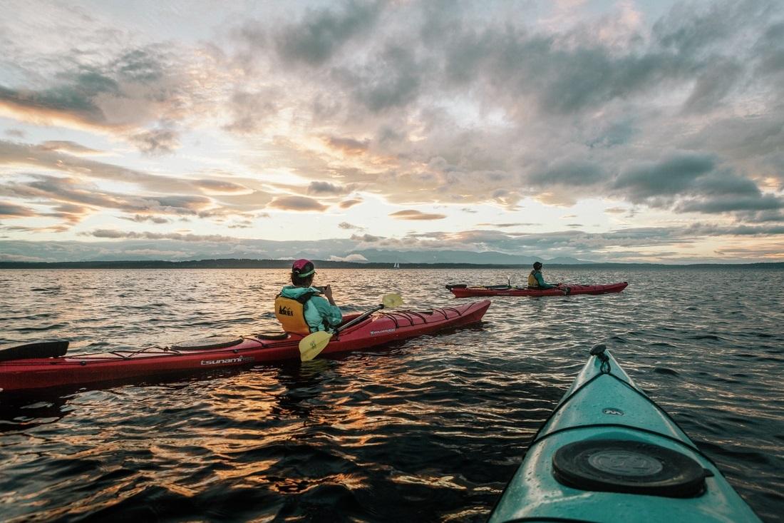 Bat Spectacular: Evening Kayak Tour