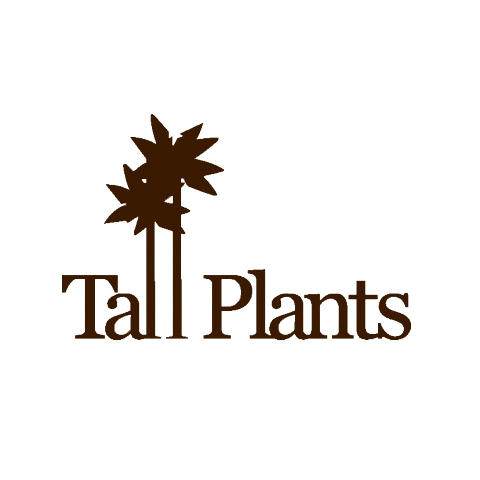 Tall Plants - Houston, TX 77024 - (713)464-8671 | ShowMeLocal.com