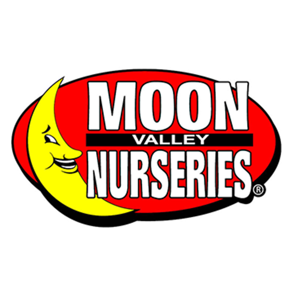 Moon Valley Landscapes