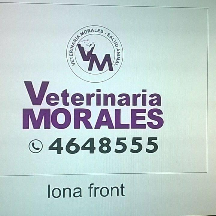 Veterinaria Morales