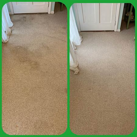 We are your local woman-owned carpet cleaning service in Atlanta, GA, assisting clients to gain confidence in their home or office again.