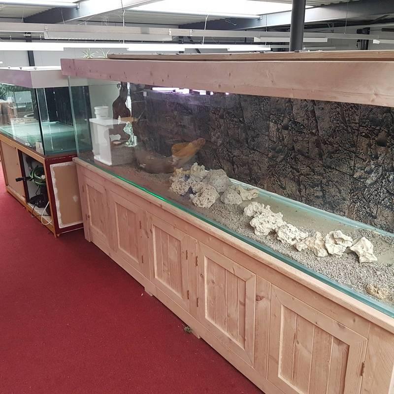 aquariumbouwer