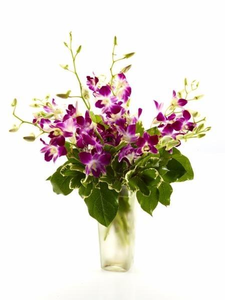Brant Florist in Burlington: Beautiful Arrangements
