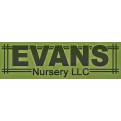 Evans; Nursery