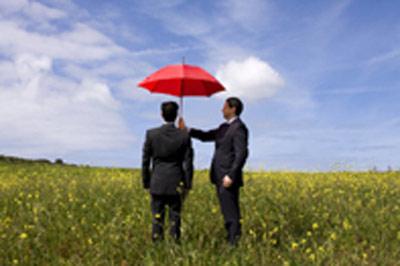 Mizar International Insurance Brokers