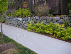 Mann Landscaping Construction Services LLC image 2