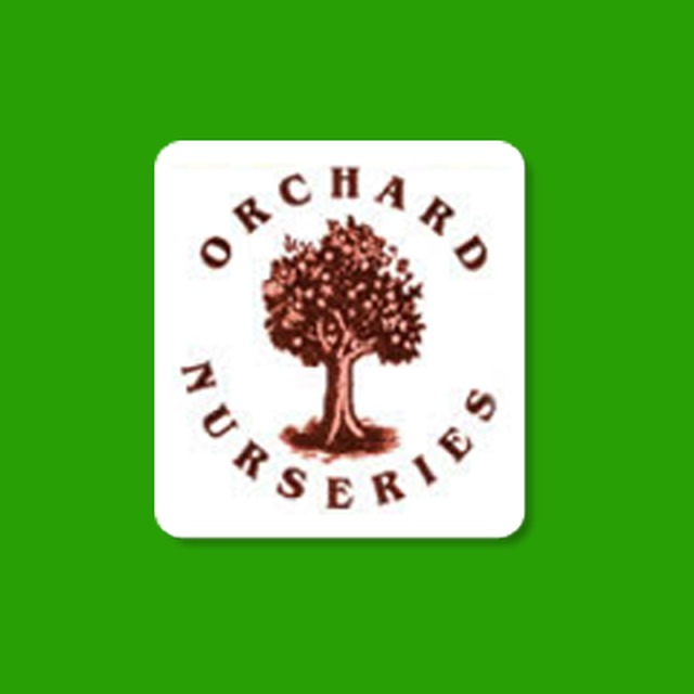 Orchard Nurseries