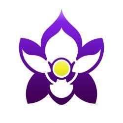 Iris Food and Spirits