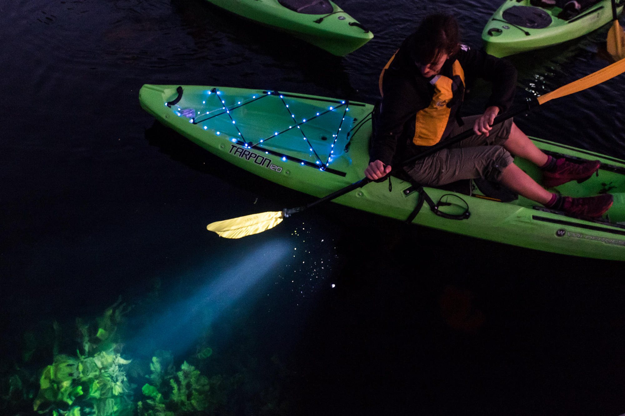 Stargazing Paddle on the Snoqualmie River