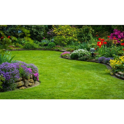 All Access Landscaping and Tree Service - Dover, NJ 07801 - (973)891-1512 | ShowMeLocal.com