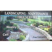 Pablo's Landscaping, Maintenance & Tree Service