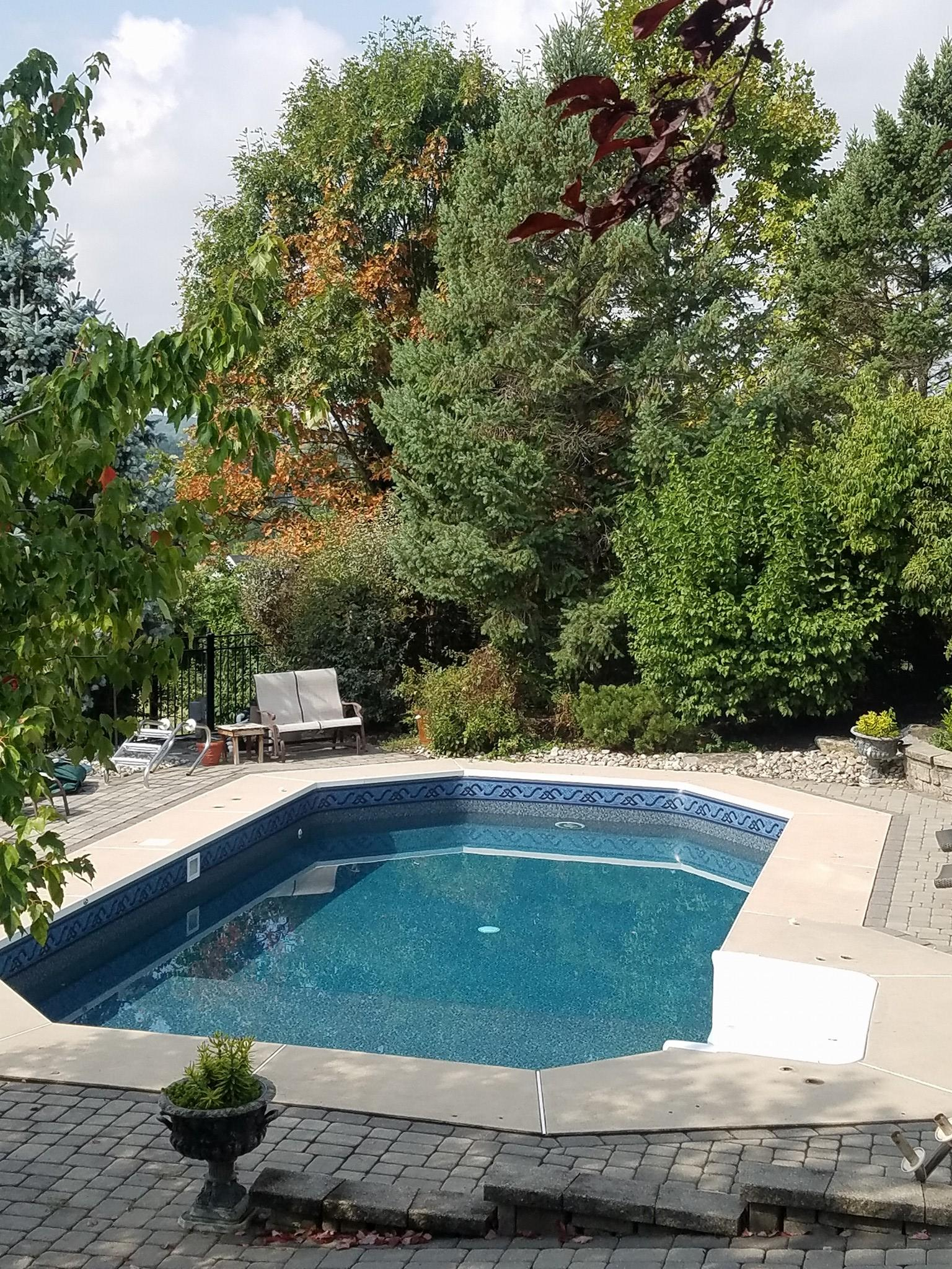 Pool Repair In Pa : Mark s pool service chamberofcommerce