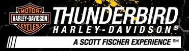 Thunderbird Harley-Davidson image 2