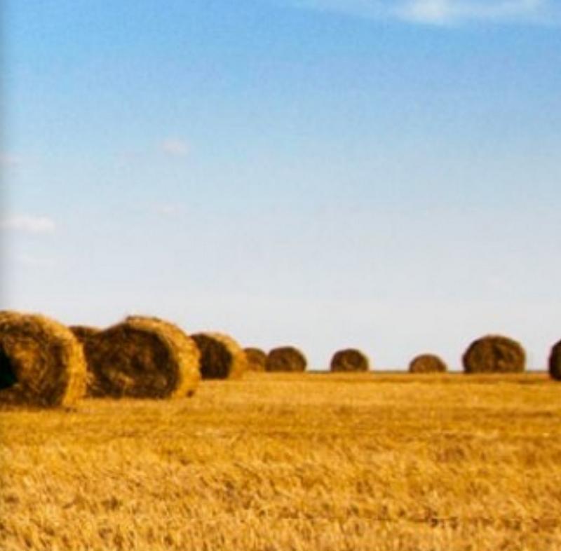 Zemědělské obchodní družstvo Litultovice