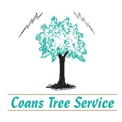 Coans Tree Service LLC