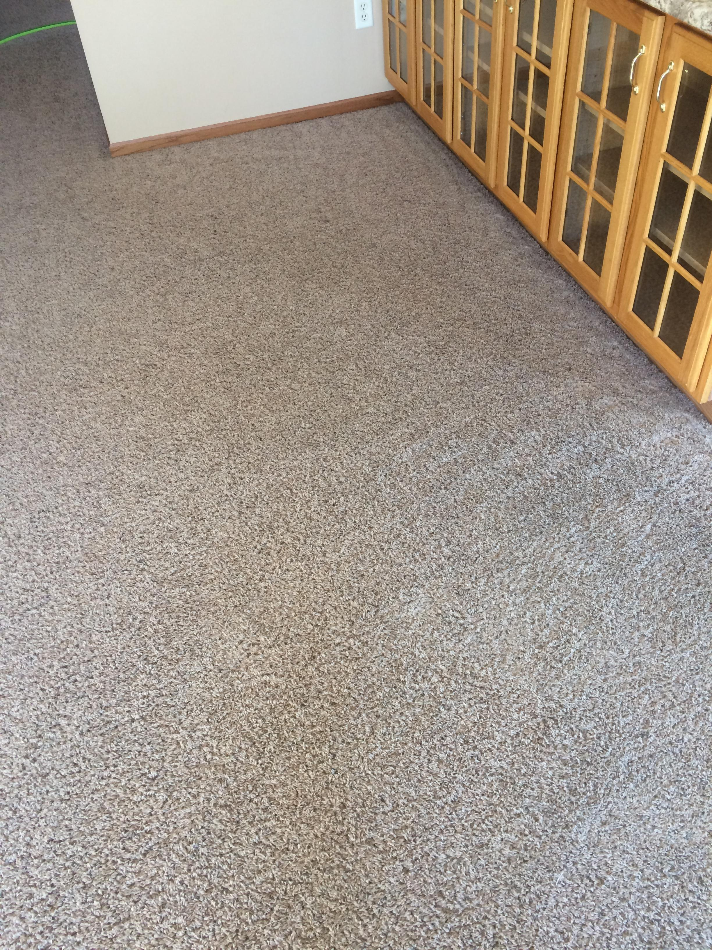 Carpet wizard in burlington ia furniture cleaning for Furniture burlington wa
