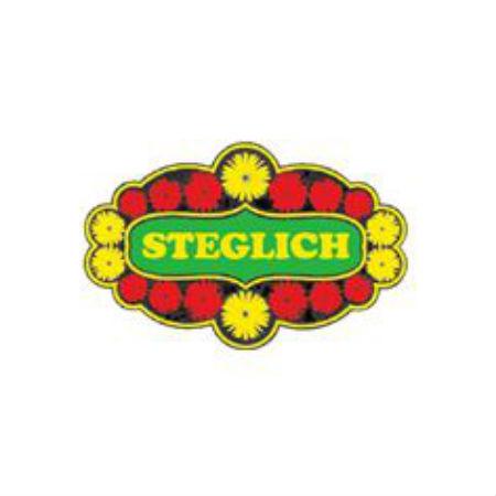 Bild zu Blumenfachgeschäft Steglich in Bautzen