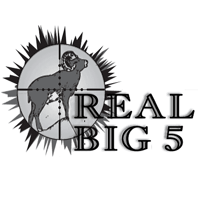 Real Big 5 Ltd - Stockbridge, Hampshire  - 07977 150104 | ShowMeLocal.com