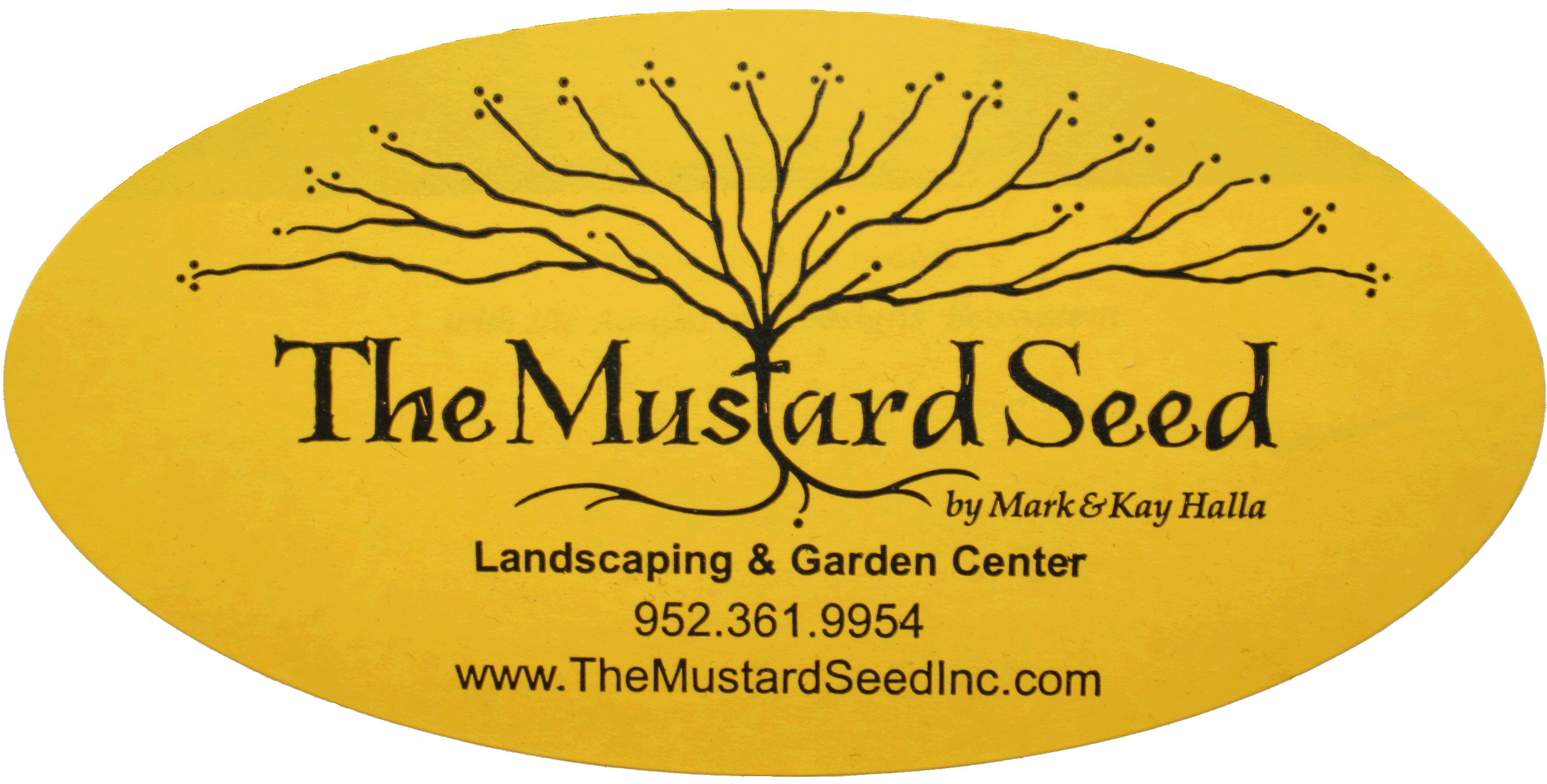 the mustard seed The mustard seed in the parable grows to be a huge tree, representing the tiny beginnings of christianity when just a few disciples began to preach and teach the gospel eventually, the kingdom grew to huge proportions, encompassing the entire world and spreading over centuries.