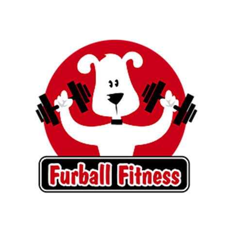 Furball Fitness Pet Care