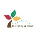 B. Haney & Sons