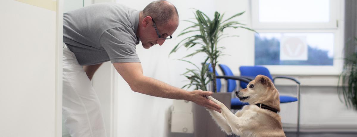 Tierärztliche Praxis für Kleintiere Dr. med. vet. Uwe Dlouhy