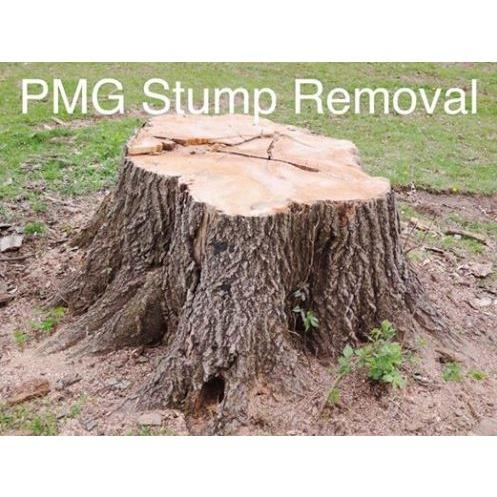 PMG Stump Removal