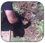 Westcoast Plumbing Service Inc.