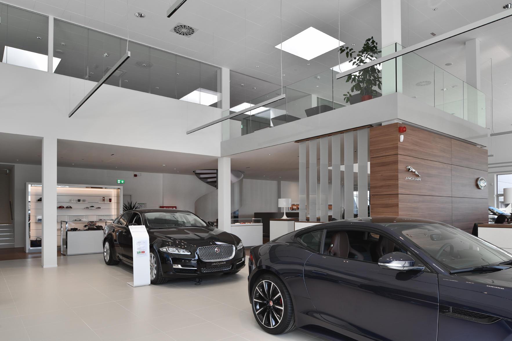 Jaguar Sud