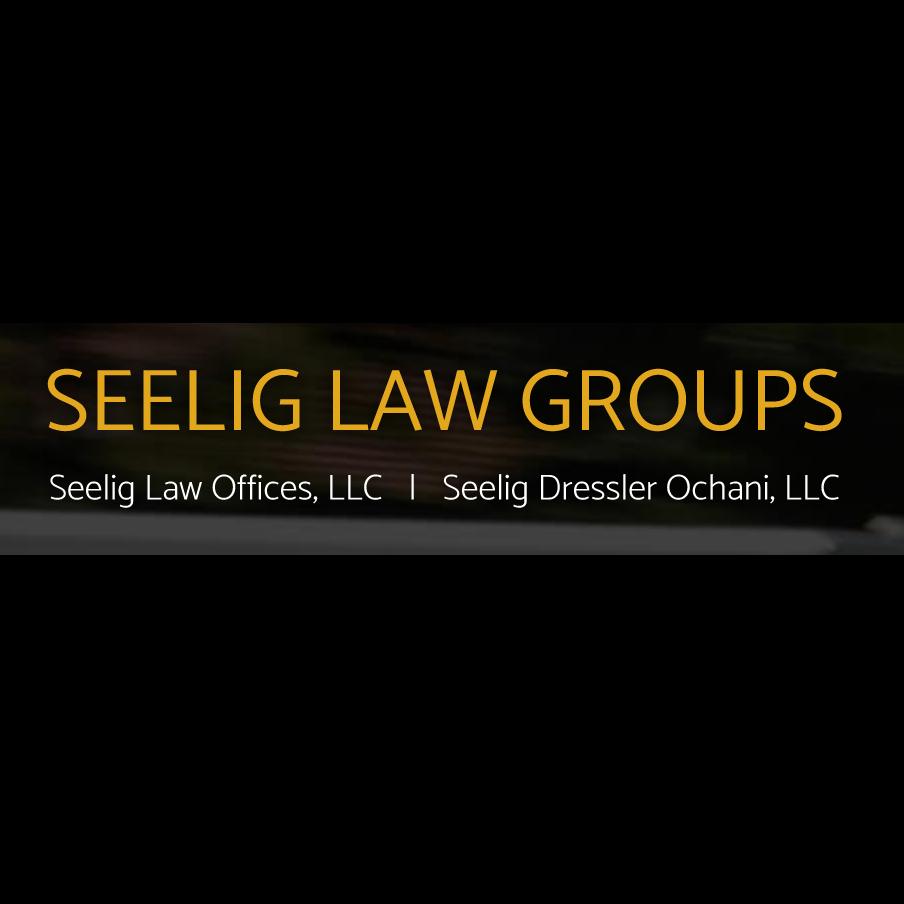 Seelig Law Offices, LLC