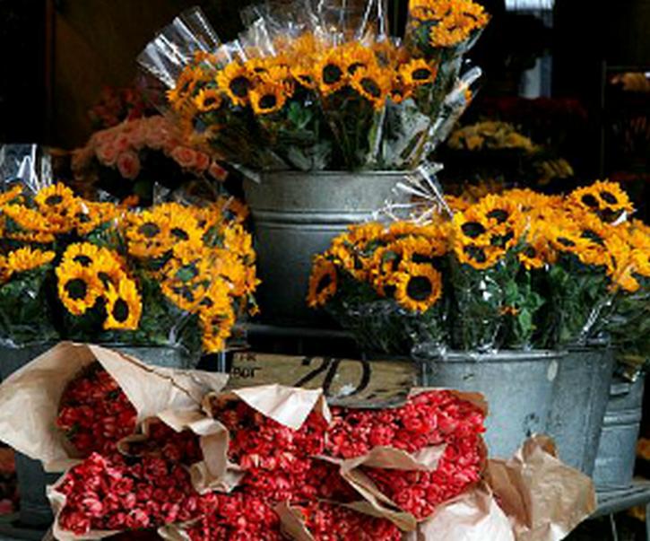 Květiny Michaela